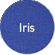 color_iris